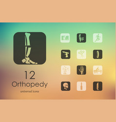 Set of orthopedics icons vector