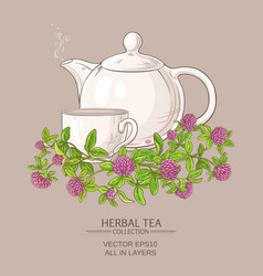 clover tea vector image vector image