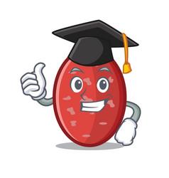 Graduation salami character cartoon style vector