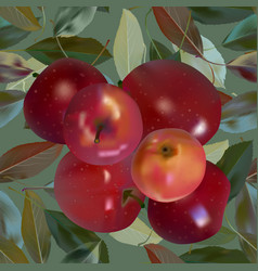 Red apples on green vector