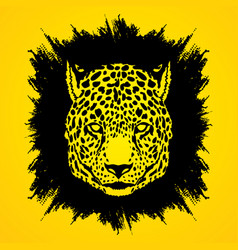 cheetah face tiger head front view face vector image vector image
