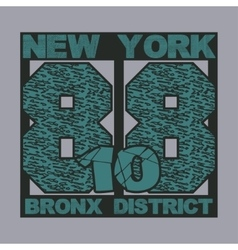 New York typography t-shirts vector image