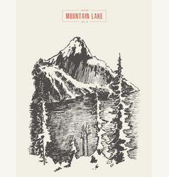 a mountain peak pine forest lake drawn vector image