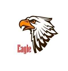 Eagle head mascot emblem vector image