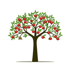 Green spring tree with leaves and red apple vector