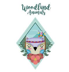 owl wooland animals cartoon vector image