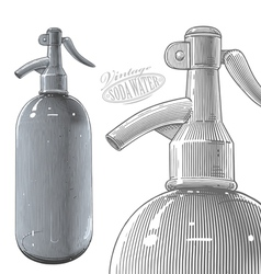 Vintage siphon bottle in engraved style vector image