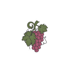 red grape icon cute flat colors design friut vector image