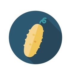 Cucumber flat icon with long shadow vector image