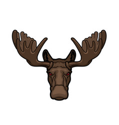 Elk or moose animal head with antlers vector