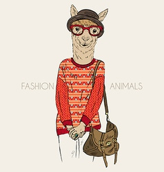 Hand drawn of hipster alpaca dressed up in vector