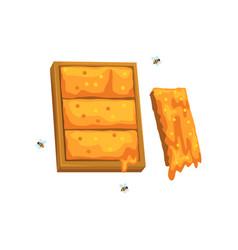 honeycomb apiary and beekeeping vector image