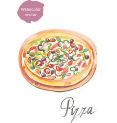 pizza watercolor vector image
