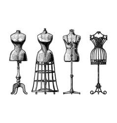 Set dress form vector