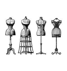 set of dress form vector image