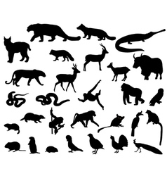 Animals of Asia vector image vector image