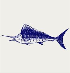 Sailfish saltwater fish vector image vector image