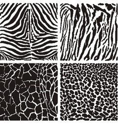 Animal black and white background vector image