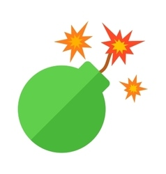 Bomb explosion weapons vector image