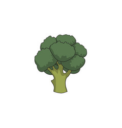 flat cartoon broccoli isolated vector image