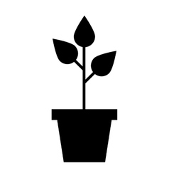 leafs plant ecology symbol vector image