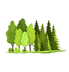 natural resources design of vector image