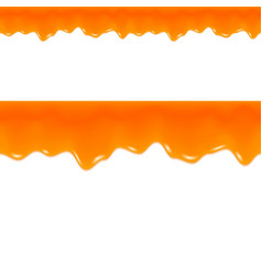 Orange Jam Drips Grapefruit Juice Seamless Border vector image
