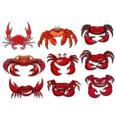 Red cartoon marine crabs set vector image
