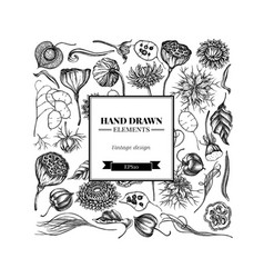 square floral design with black and white black vector image