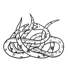 Two snakes vector
