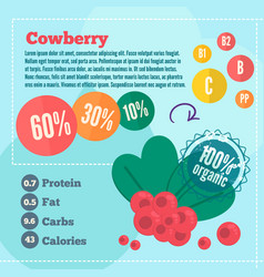 cowberry infographics vector image vector image