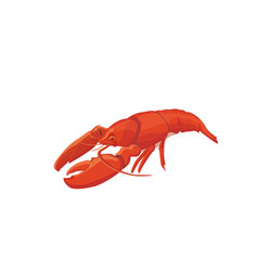 sea food crawfish icon isolat vector image vector image