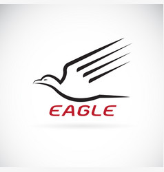 eagle design on white background bird animals vector image