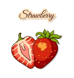 Colorful Strawberry Isolated On White vector image