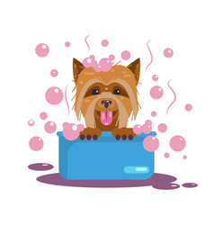 Dogs grooming puppy wash funny muzzle vector