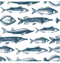 fish seamless pattern for restaurants vector image