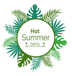 Hot summer days promotional poster with leaves vector