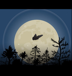 Night sky with moon a moth vector