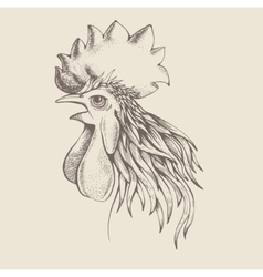 profile of cock vector image
