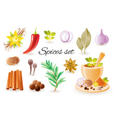 spice herb icon set with garlic cinnamon chilli vector image