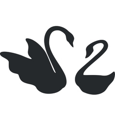 Swan couple black 01 vector