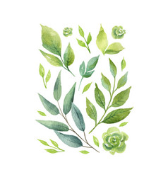 Watercolor card with green branches and vector