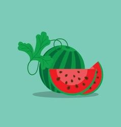 Watermelon and cut off a slice vector