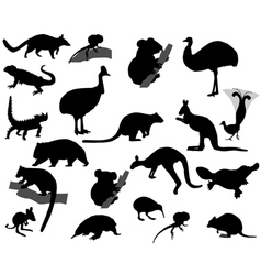 Animals of Australia vector image vector image