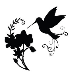 Black silhouette humming and flower composition vector