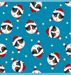 black white cat santa claus on indigo blue vector image