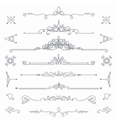 Calligraphic dividers vector