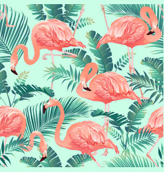 flamingo bird and tropical palm background vector image