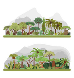 Jungle trees collection tropical jungle vector