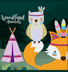 owl and fox wooland animals cartoon vector image